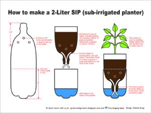 2-Liter-SIP-3.9-300-dpi-dkong