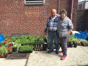 On the last day of May, community volunteers pitched in to pick up all the plants for the plant sale.