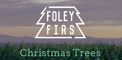 foley-firs