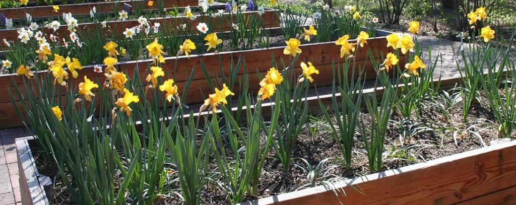 Sherman_Creek_Park_Banner6_CAPTION_Riley-Levin_Childrens_Garden_Riley-Levin_jardín_de_niños