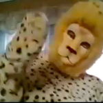 school mascot, spots
